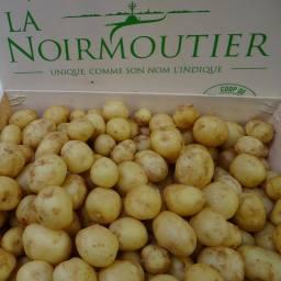 La Bonnotte of Ile de Noirmoutier – The World's Most Expensive Potato